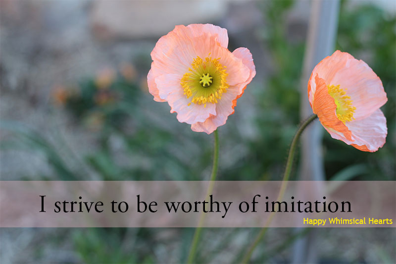 I strive to be worthy of imitation